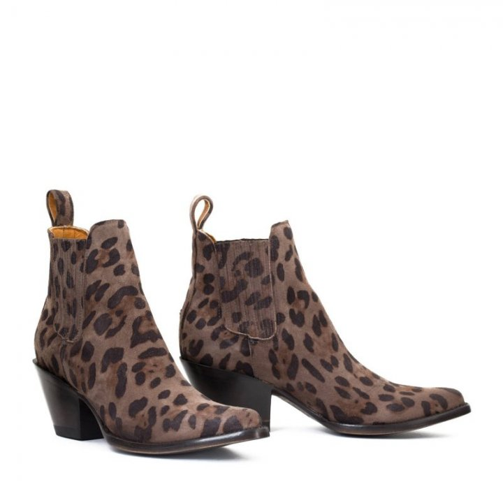 ESTUDIO DUN BROWN LEOPARD